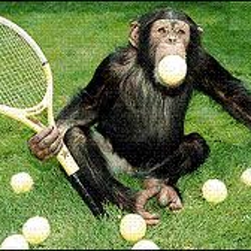 monkey tennis?'s avatar