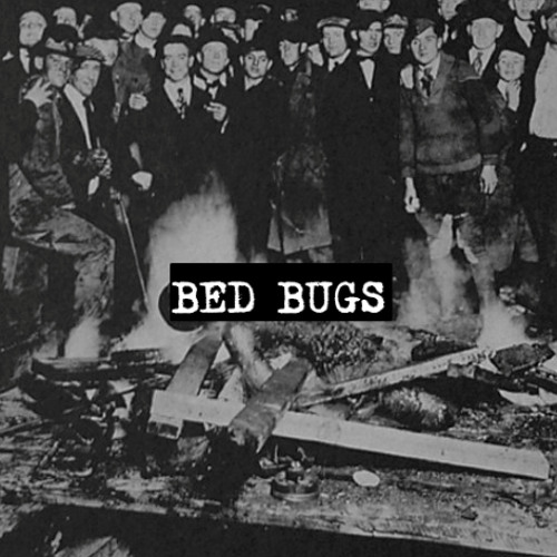 BED BUGS's avatar