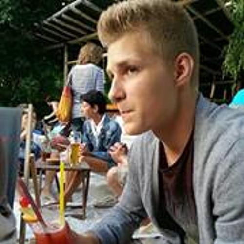 Thomas Vulpe's avatar