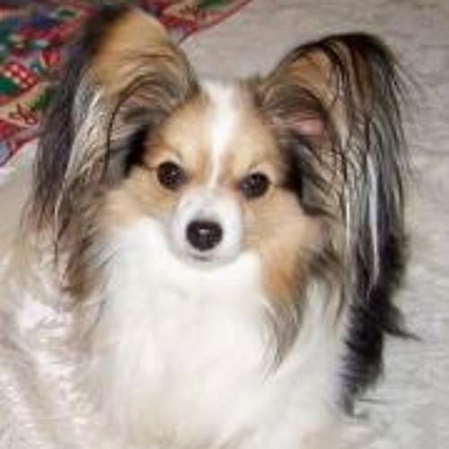 Cheryl Hazen's avatar
