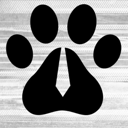 Space Dog Executive's avatar