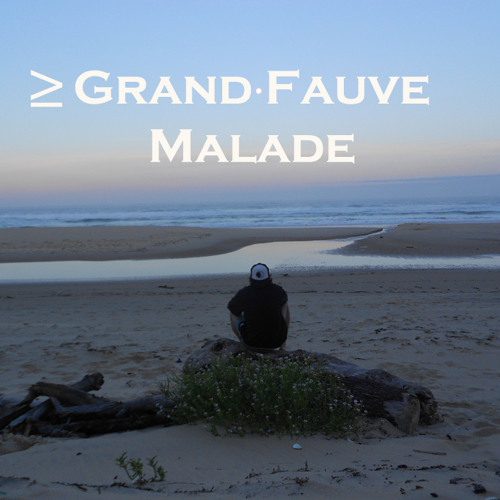 ≥ Grand Fauve Malade's avatar