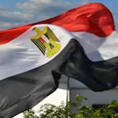 Ibrahim Sabry Amro's avatar