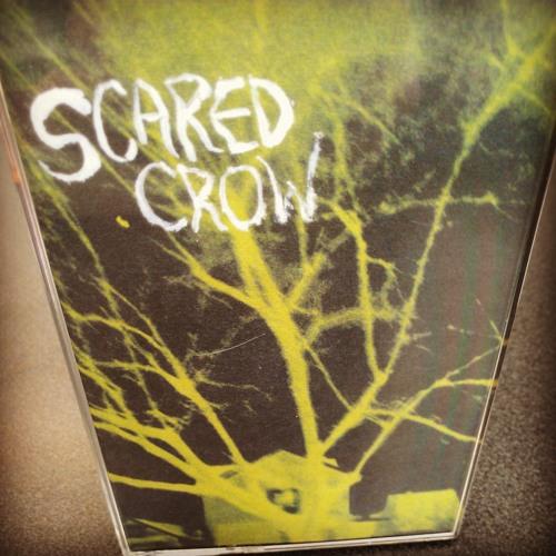 scared crow's avatar
