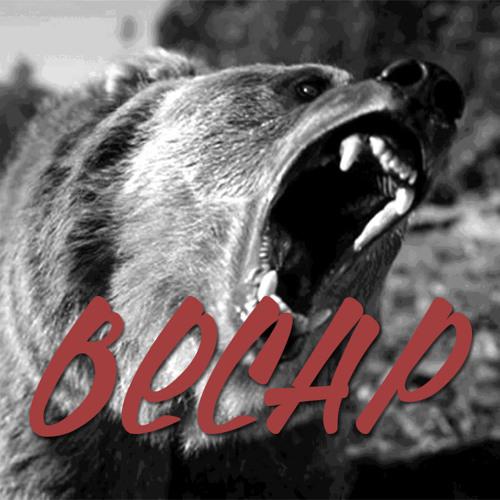 BECAP's avatar