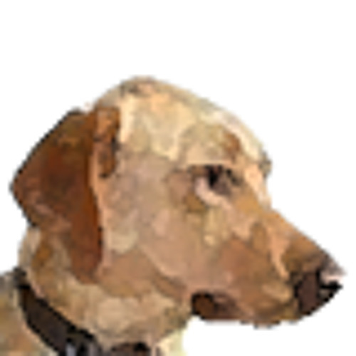 cogdogroo's avatar
