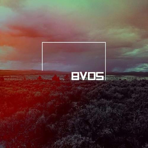 BVDS's avatar