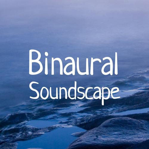 Binaural Soundscape's avatar
