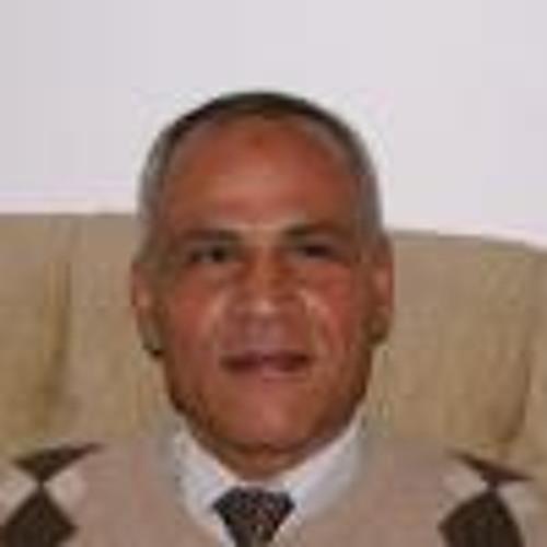 Sherif Ismail 1's avatar