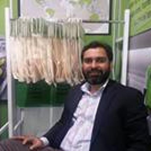 Abid Bajwa's avatar