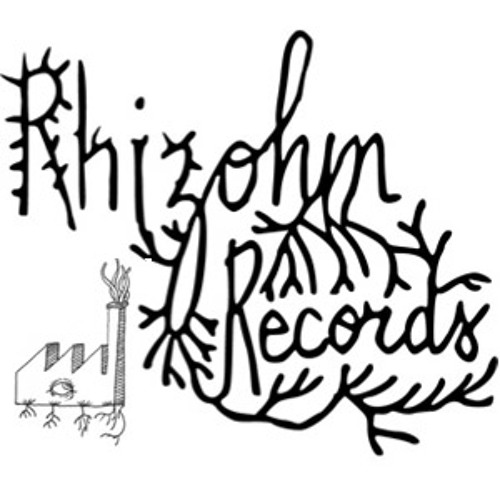 Rhizohm Records's avatar