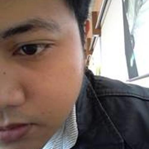 Lester Ebarle Arroyo's avatar