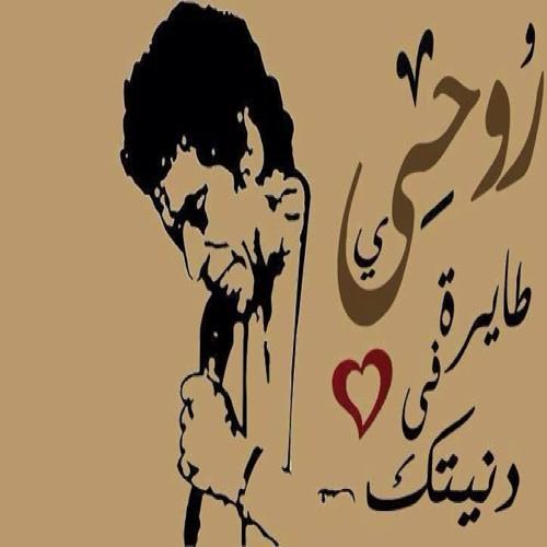 Ahmed Elsharkawy 10's avatar