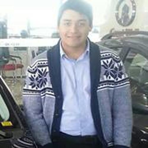 Maurícío Peña F's avatar