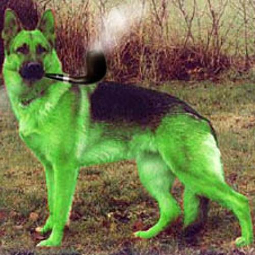 Green Flying Dog's avatar