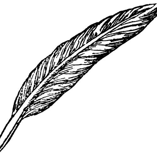 Dichter's avatar