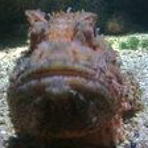 gojats's avatar