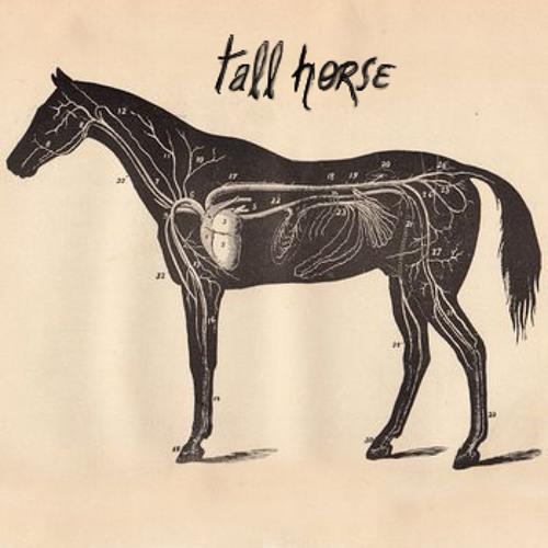 Tall horse's avatar