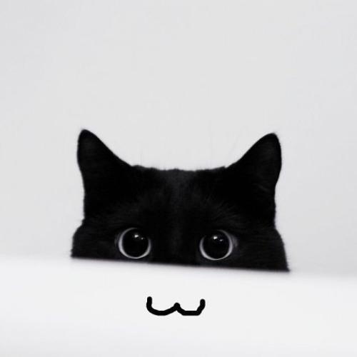 domi.ql's avatar