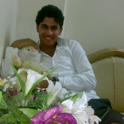 Bakr Alanwar's avatar