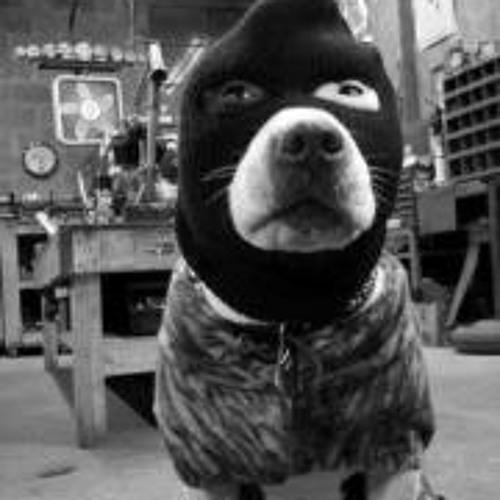 RAW ENFORCEMENT's avatar