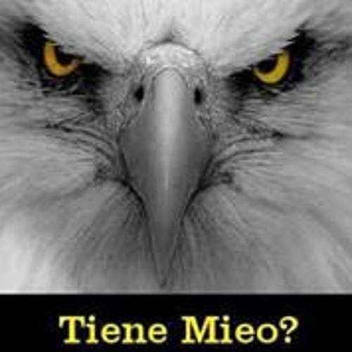 Miguel El Bory Nieves's avatar