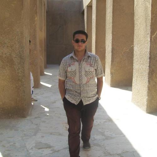 Bassam Fawzy Abdelrahman's avatar