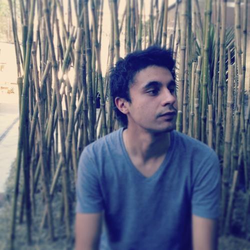 Diego Aravena Silva's avatar