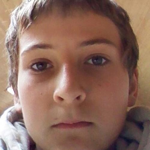josebknzegers's avatar