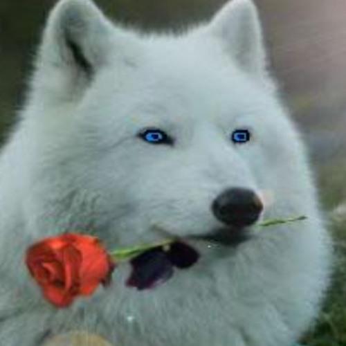 RoseWolf's avatar
