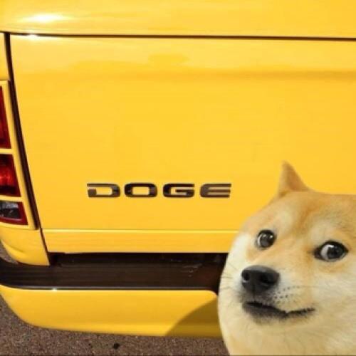 DogeWobs's avatar