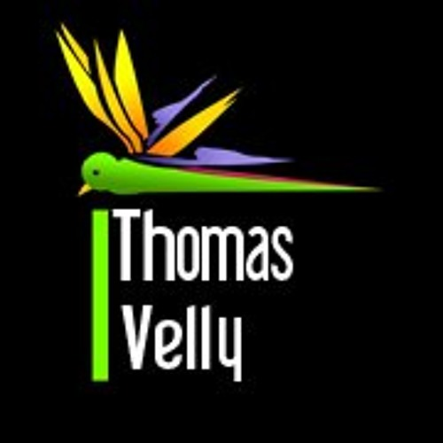 Thomas Velly's avatar