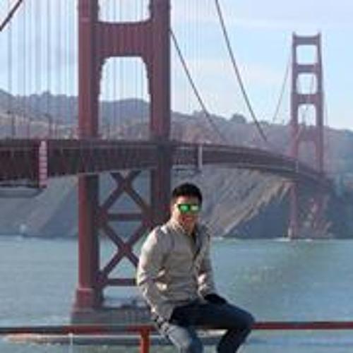 Shawn Flaw13ss Hsu's avatar