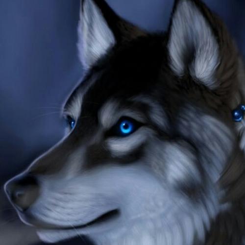 blu_wolf_253's avatar