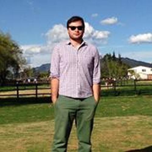 Felipe Romero 29's avatar