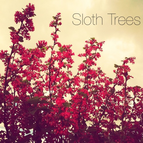 sloth trees's avatar