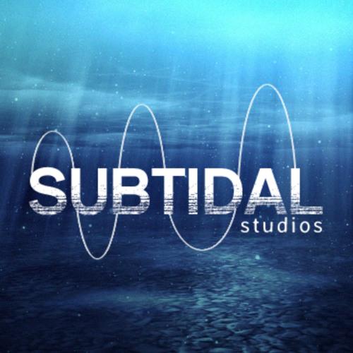 Subtidal Studios's avatar