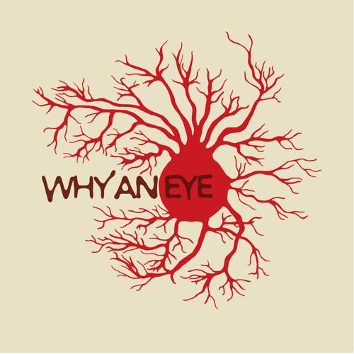 Why an Eye's avatar