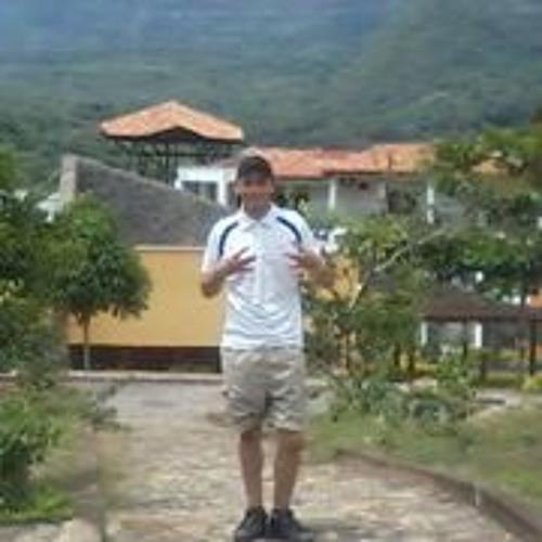 JULIAN CAMILO MENDOZA's avatar
