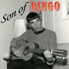 Son of Dingo