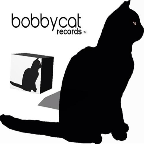 Bobbycat Remixes's avatar