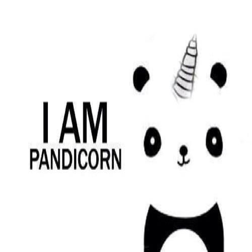 Pandicorn:3's avatar