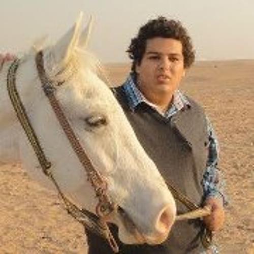 Abdelhady Mahmoud's avatar