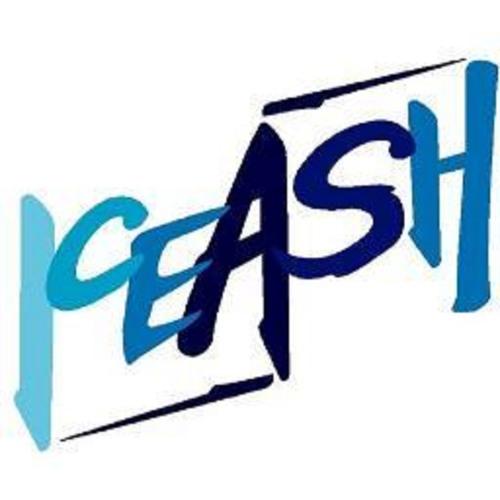 Iceash's avatar