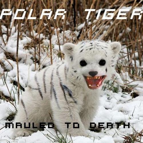 Polar Tiger's avatar
