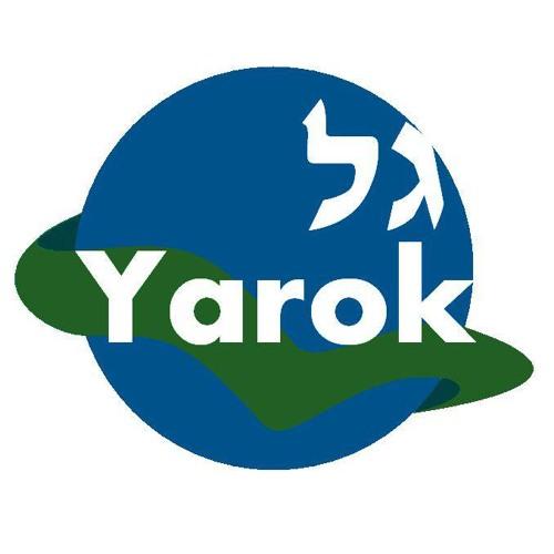 Gal Yarock's avatar