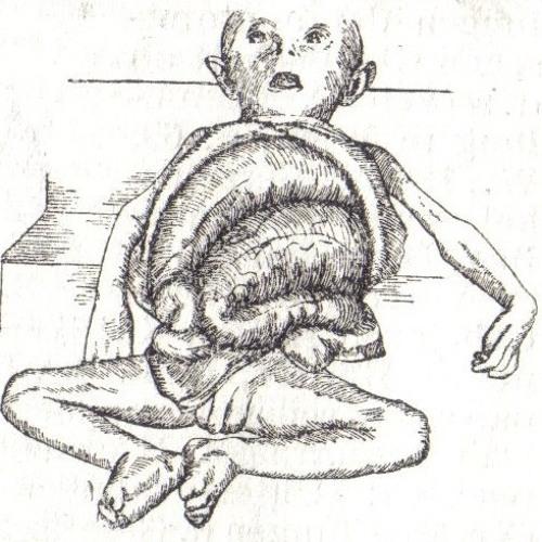 Chilla'huilla's avatar