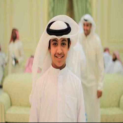 a_bineid's avatar