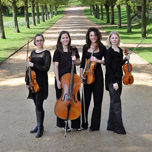 Allegrezza Quartet's avatar