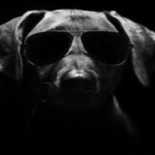 SNOOP-DOGGY's avatar